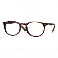 lunettes de lecture panthos écaille