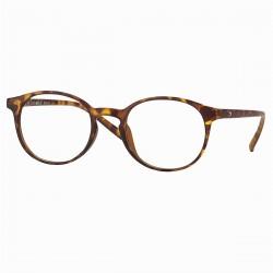 lunettes de lecture plastique